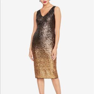 Rachel Roy gorgeous dress.